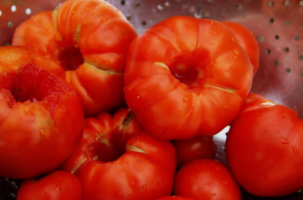 Tomaten passieren