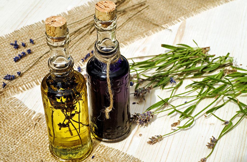 Lavendel Öl Lavendel anbauen