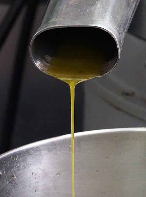 Öl selber machen